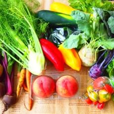 無農薬野菜の素敵なカフェなど